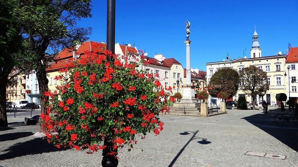 Zdjęcia: Oleśnica, Dolny Śląsk, rynek, POLSKA