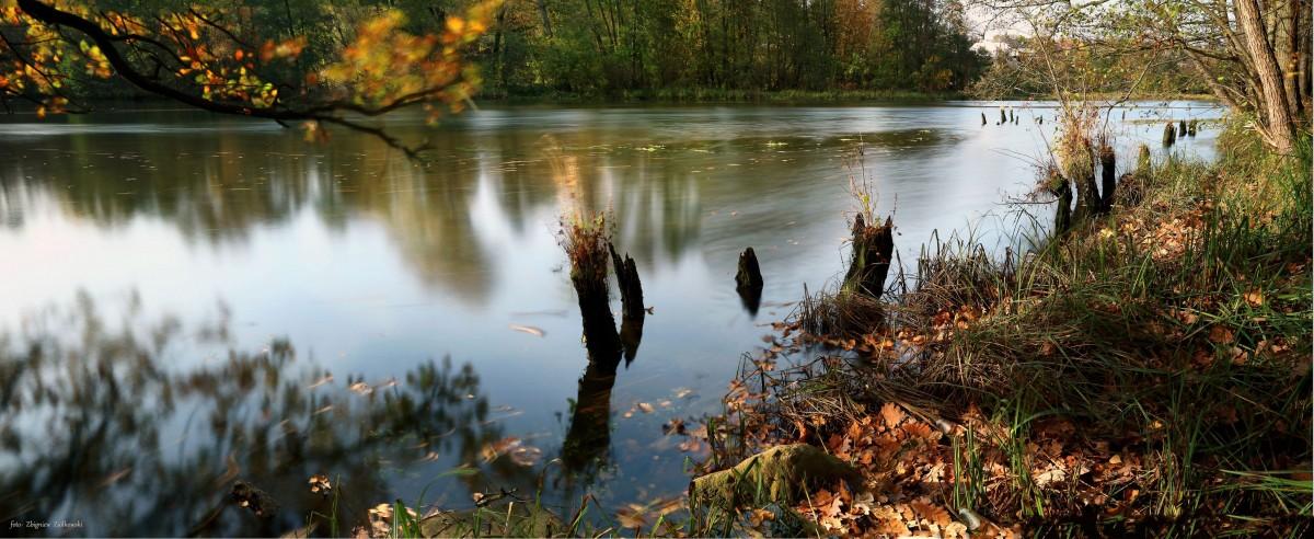 Zdjęcia: Dolina Brdy, Bory Tucholskie, Jeszcze trochę jesieni-, POLSKA