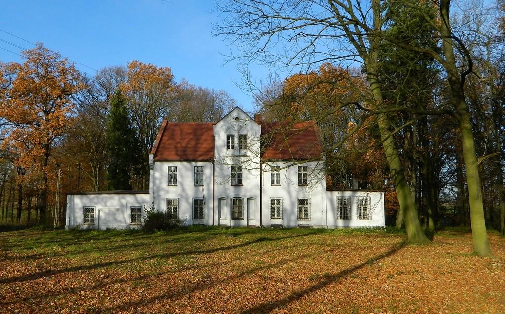 Zdjęcia: Płużnica Wielka, opolskie, Dwór, zamieszkały, POLSKA