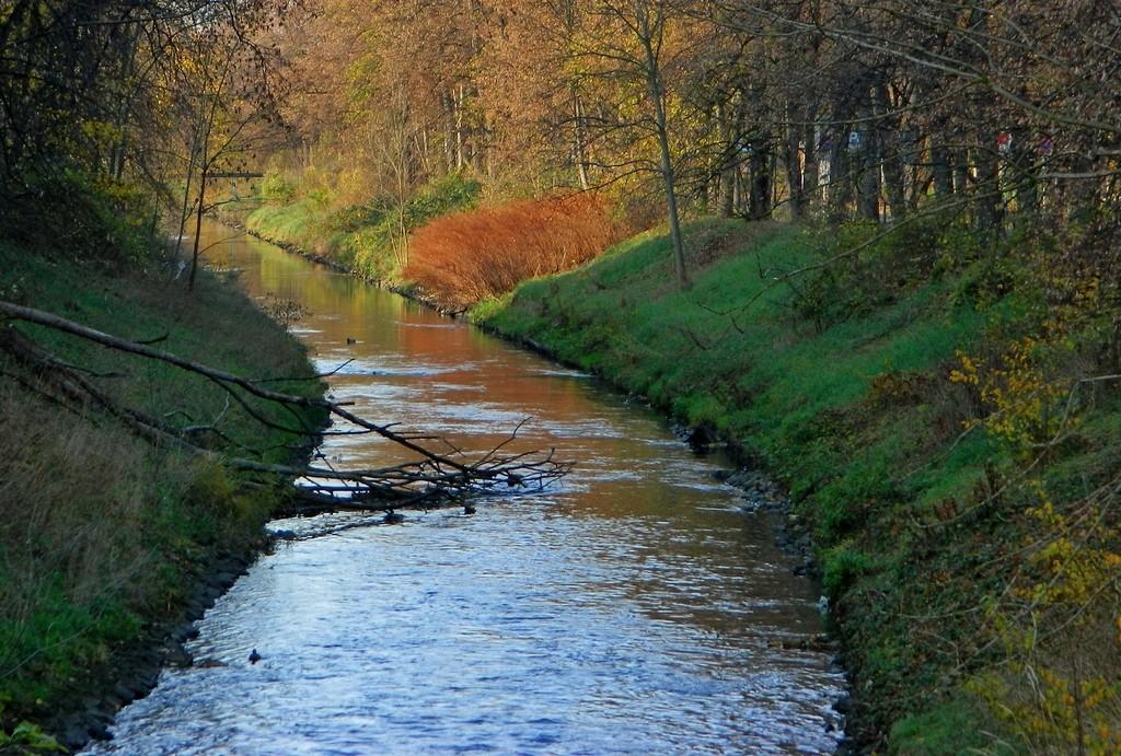 Zdjęcia: Gliwice, śląskie, Rzeka Kłodnica w stronę kanału Gliwickiego, POLSKA