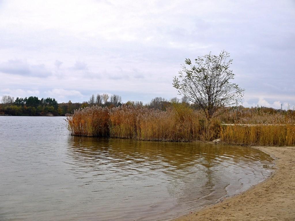 Zdjęcia: Nad Odrą, opolskie, Z tęsknoty za latem, POLSKA