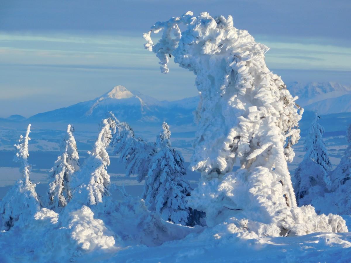 Zdjęcia: masyw pilska, beskid żywiecki, w śnieżnej szacie..., POLSKA