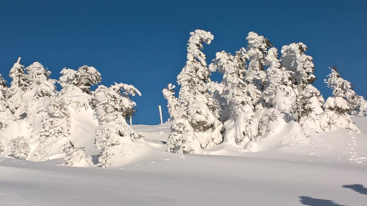 Zdjęcia: Śnieżnik , Dolnośląskie , Tak było 8 lutego na Śnieżniku, POLSKA
