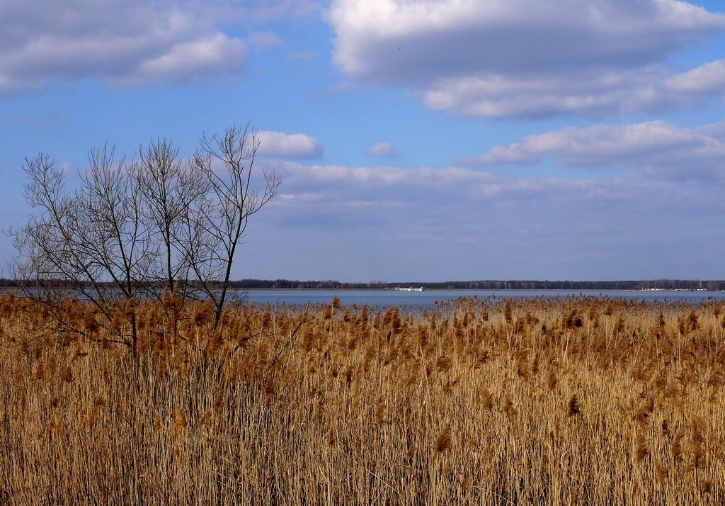 Zdjęcia: Turawa, opolskie , Jezioro turawskie, w dali elektrownia wodna., POLSKA