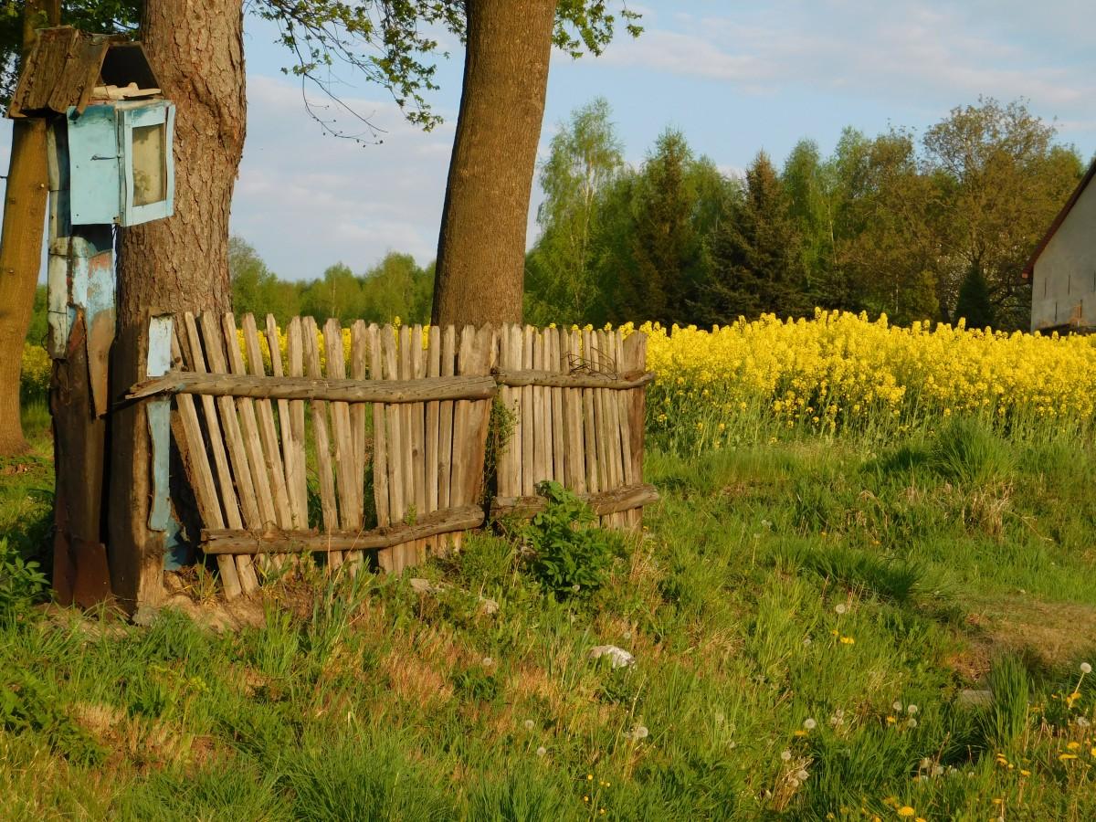 Zdjęcia: dolina karpia, małopolska, kapliczka..., POLSKA