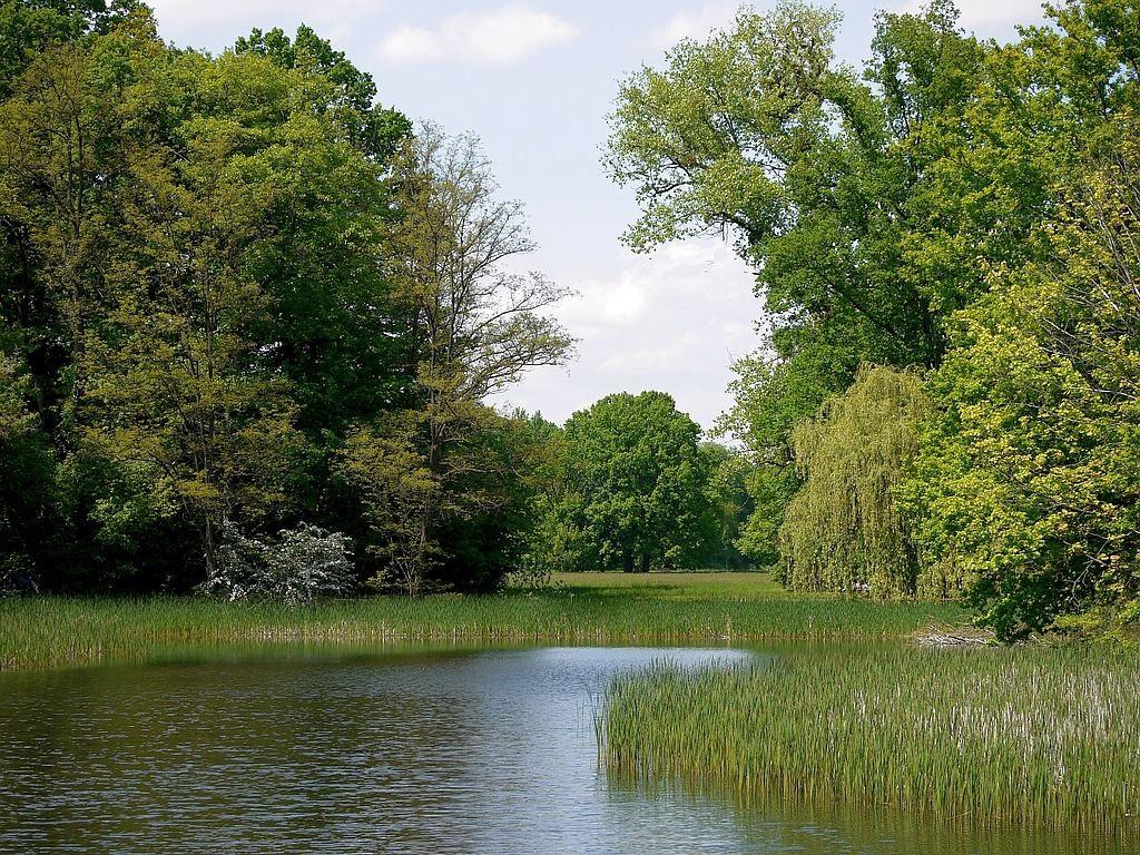 """Zdjęcia: Park na wyspie """"Bolko"""", opolskie, W spokojny dzień, POLSKA"""