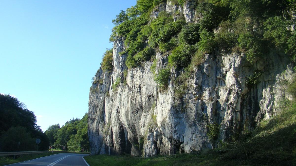 Zdjęcia: J.w, Jura, Natura, POLSKA