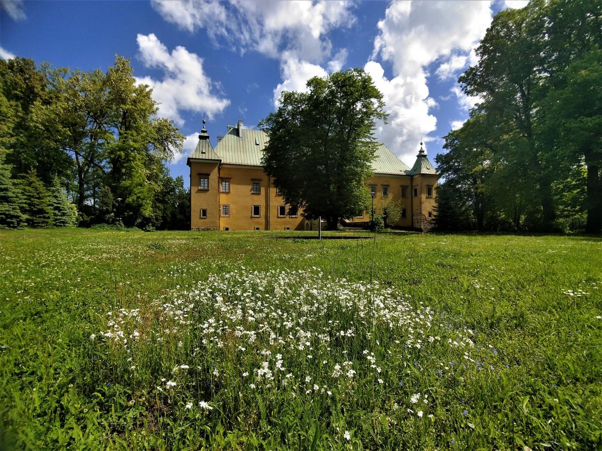 Zdjęcia: dolina karpia, małopolska, Zamek  w Spytkowicach, POLSKA