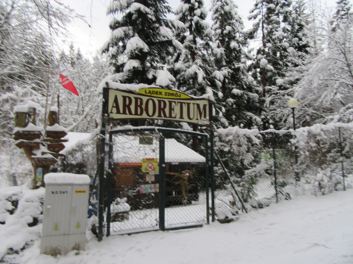 Zdjęcia: Lądek Zdrój, Lądek Zdrój, Leśny Ogród, POLSKA
