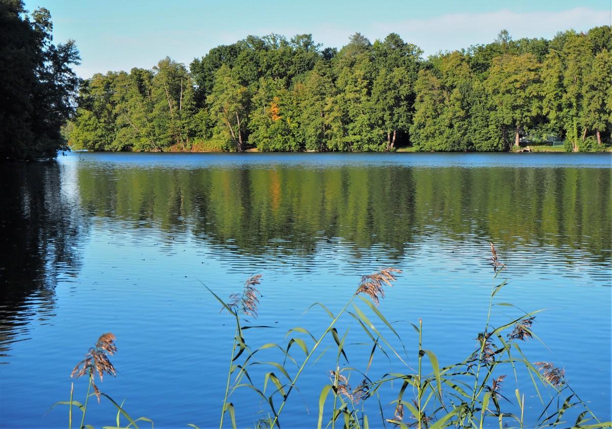 Zdjęcia: Jezioro Trześniowskie w Łagowie, Lubuskie, powolutku kroczy jesień..., POLSKA