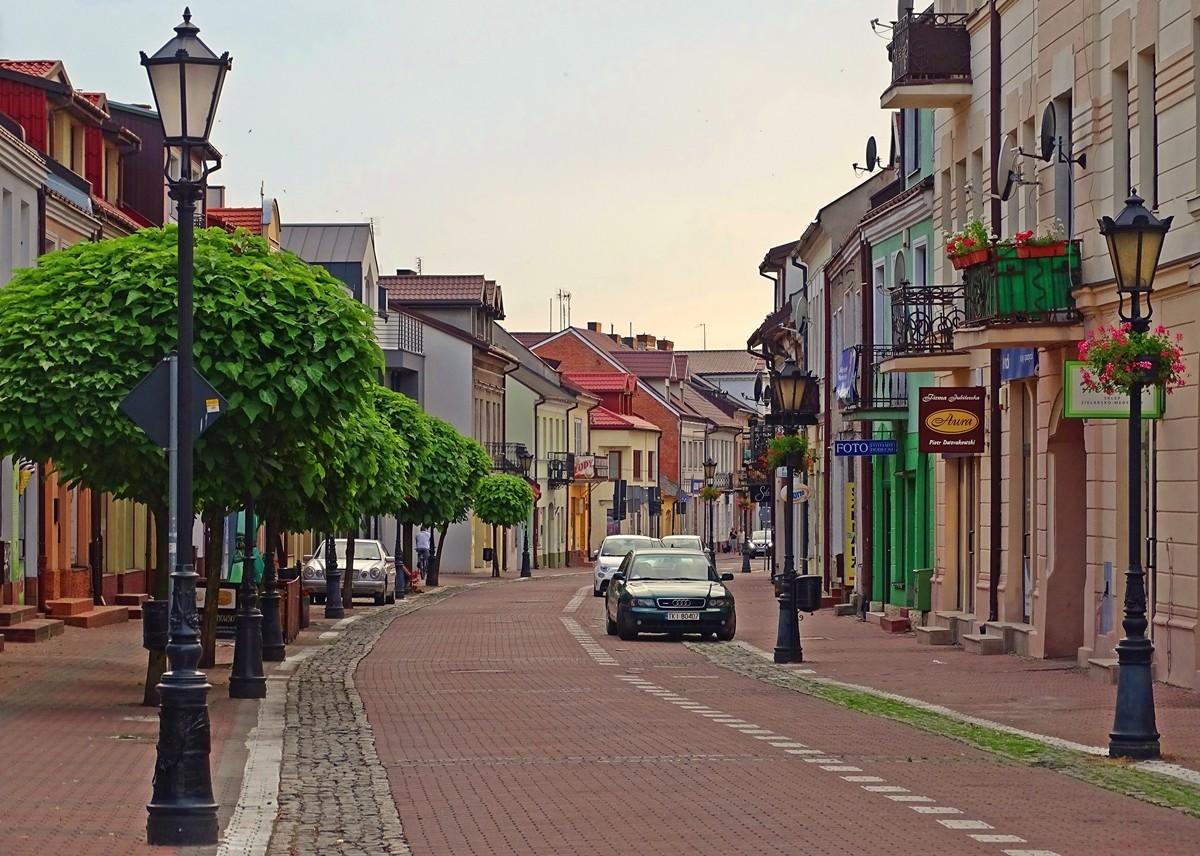 Zdjęcia: Łowicz, łódzkie, ul Zduńska, POLSKA