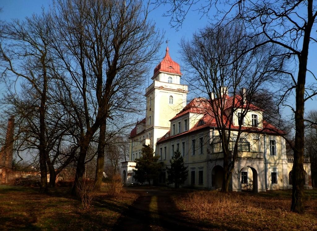 Zdjęcia: Dąbrówka Górna, opolskie, Pałac z 2 poł. XII w., XIIIw, POLSKA