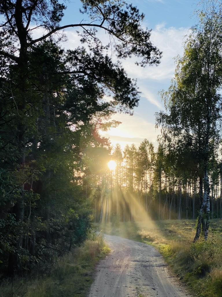 Zdjęcia: Jezioro Morzyc , Zarzewo , Moje miejsce na ziemi , POLSKA