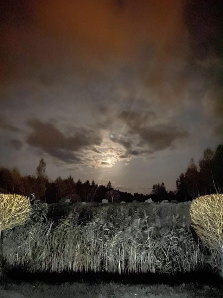 Zdjęcia: Łeba , Pomorze , Magiczna noc nad Łeba Parkiem , POLSKA