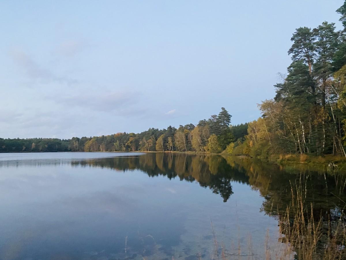 Zdjęcia: Jezioro Czarne , Pomorskie , Jezioro jesienną porą, POLSKA