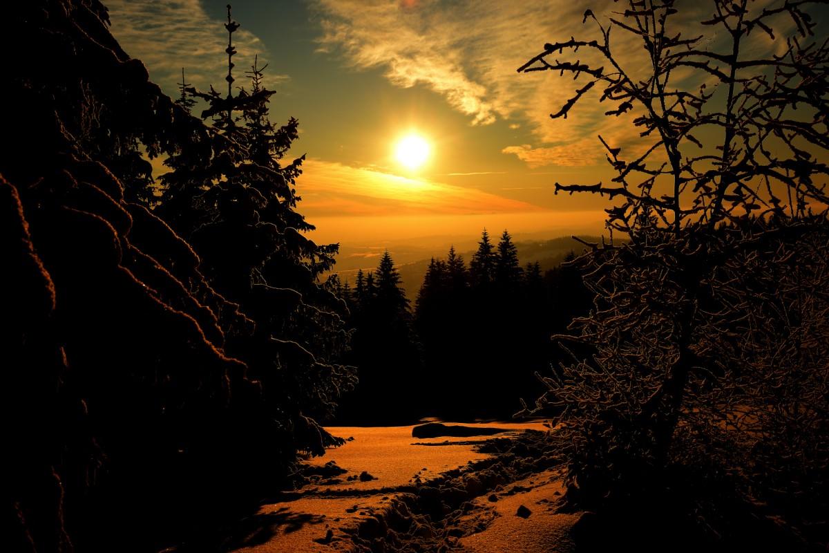 Zdjęcia: Gorce Stare Wierchy, Małopolska, Pod Słońce, POLSKA
