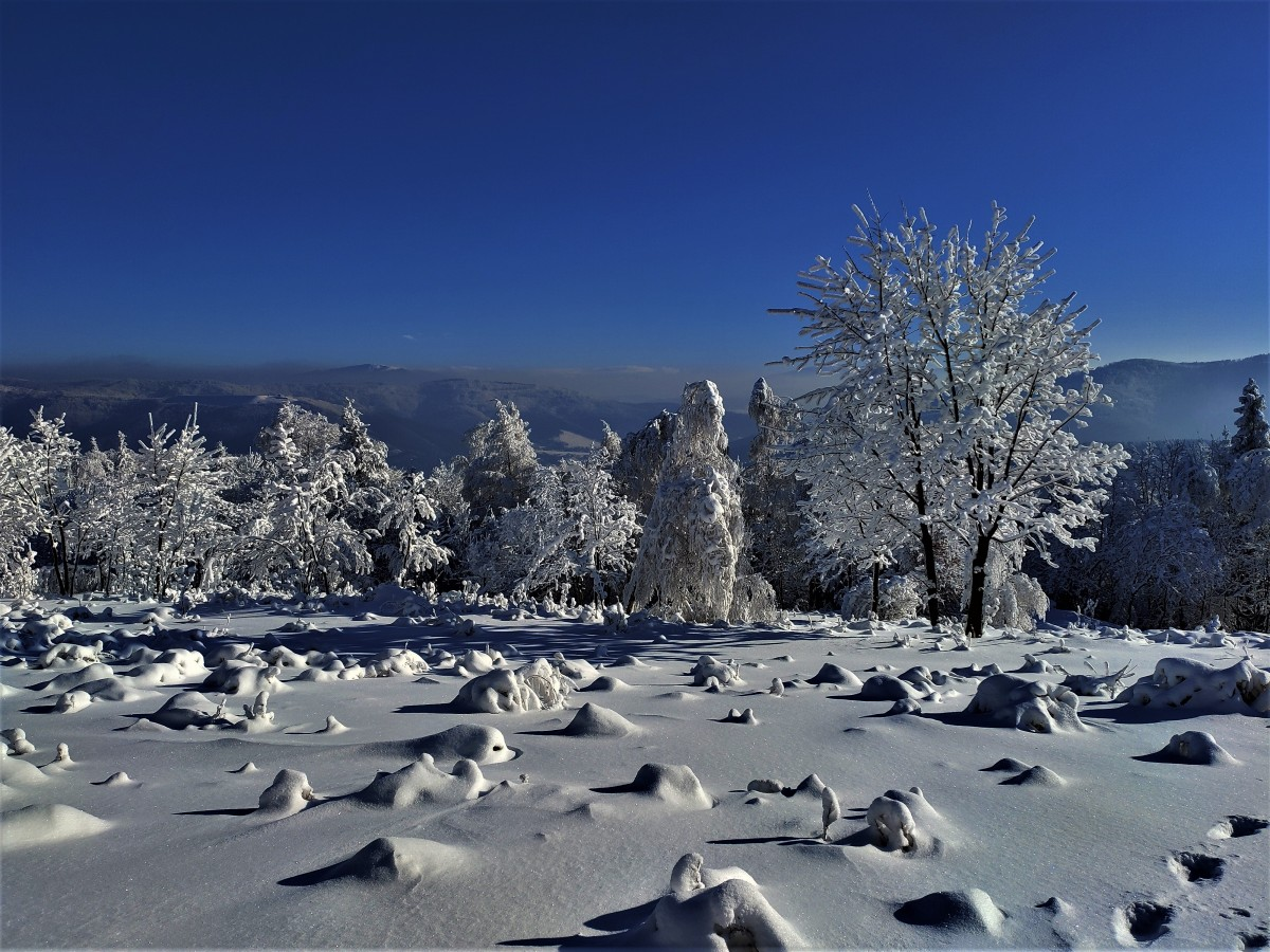Zdjęcia: w drodze, Beskid Mały, Hrobacza łąka w zimowej szacie, POLSKA