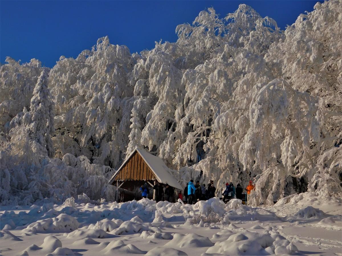Zdjęcia: w drodze, Beskid Mały, Bajkowa Kraina , POLSKA