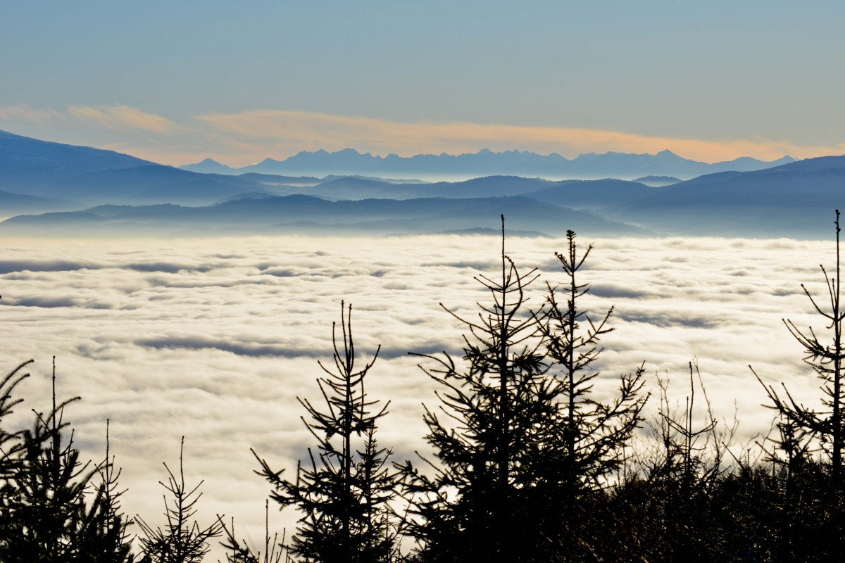 Zdjęcia: Klimczok, Beskid Sląski, Zanim ustąpią poranne mgły, POLSKA