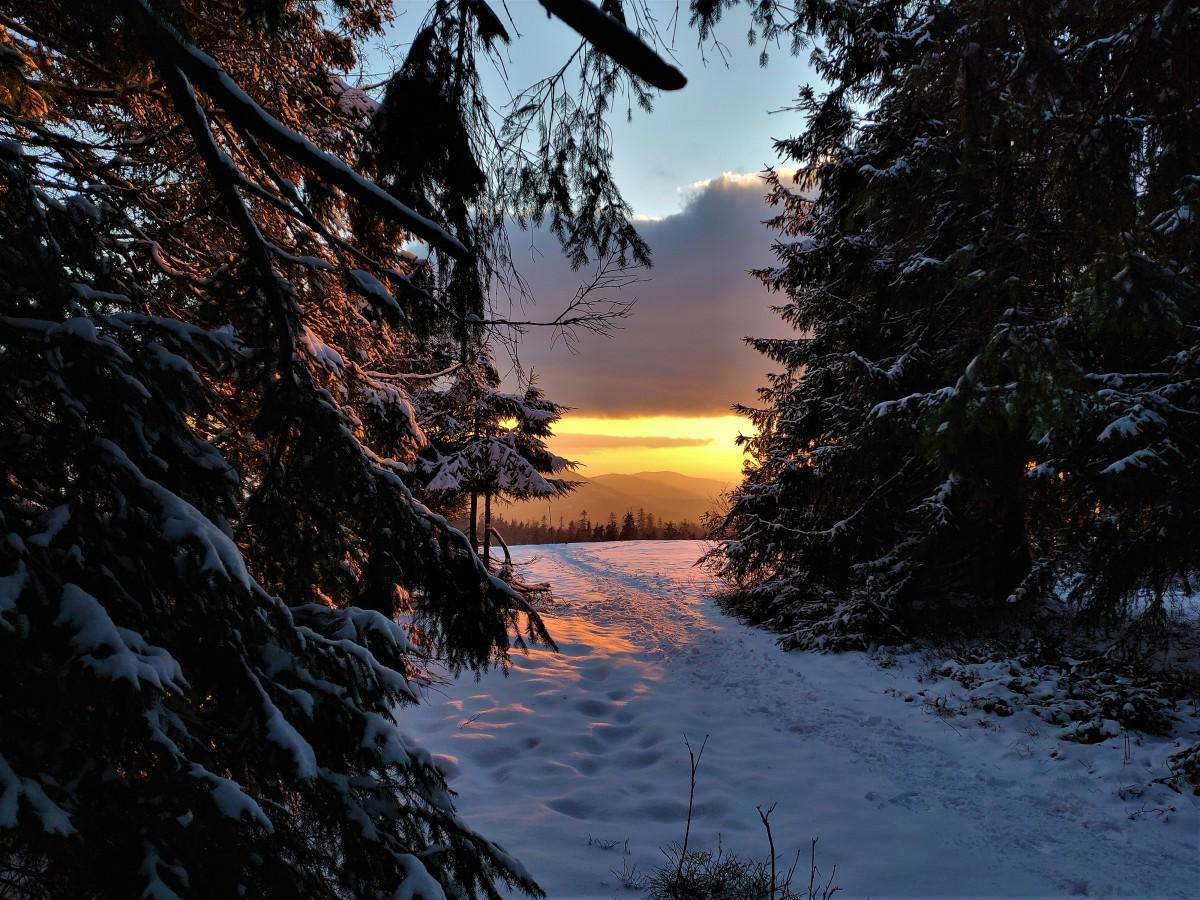 Zdjęcia: Hala Krawcula, Beskidy, droga do słońca, POLSKA