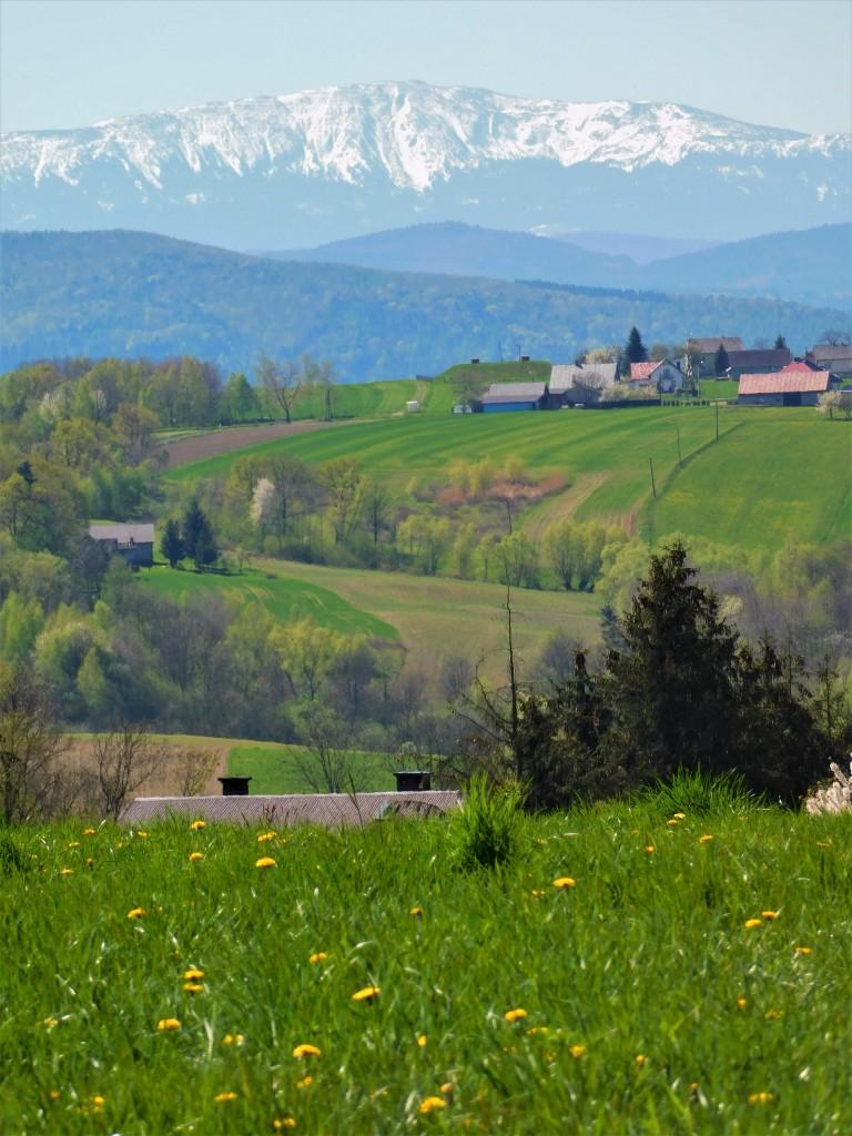 Zdjęcia: dolina karpia, małopolska, widok z doliny na Babią Górę, POLSKA