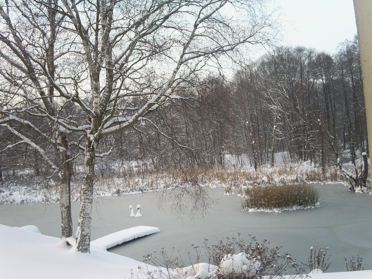 Zdjęcia: Ogrodzieniec, Jura Krak-Częstochowska, Zima, a na narty nie wolno jechać!, POLSKA