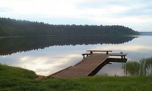 Zdjęcie POLSKA / Podlasie / Jezioro Rospuda / Goła Zośka