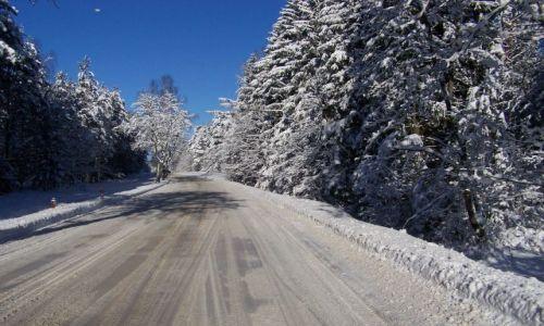 Zdjęcie POLSKA / Mazury / Gołdap / Mazury zimą