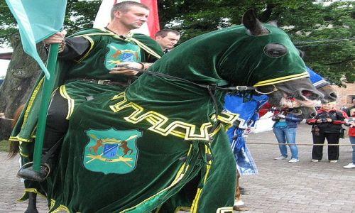 Zdjęcie POLSKA / Kujawsko - Pomorskie / Golub - Dobrzyń / 35 Turniej Rycerski - finały