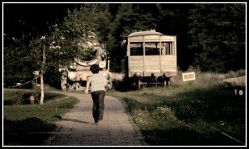 Zdjęcie POLSKA / brak / Białowieża / spóźniony