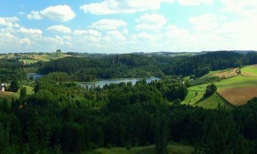 Zdjecie POLSKA / suwalski park krajobrazowy / Smolniki - widok z punktu widokowego  na cisową górę i okolice / miejsca jeszcze nie zadeptane