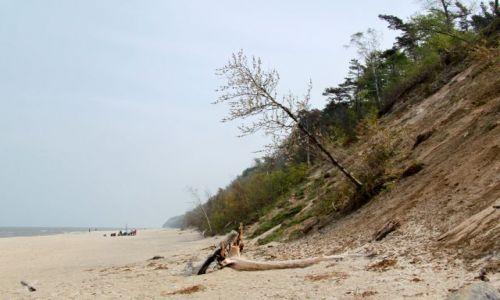 Zdjęcie POLSKA / gm Władysławów / Jastrzębia Góra / Już nietety jesienna plaża