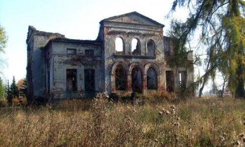 Zdjecie POLSKA / łódzkie / Biernacice k. Uniejowa / Ruiny dworu w B