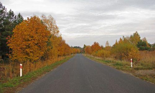 Zdjecie POLSKA / Dolny Śląsk / Żelazny Most / Polska (lokalna) jesień