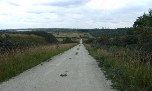 Zdjecie POLSKA / Konin / Ślesin / Ziemia Slesińska na rowerze