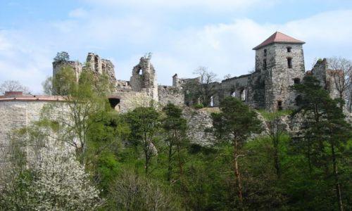 Zdjecie POLSKA / - / zamek Tenczyn / zamek na Jurze