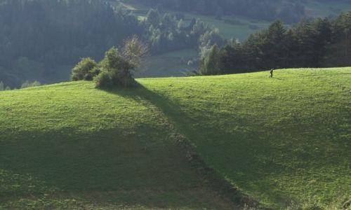 Zdjecie POLSKA / Gorce / Gorce / Pustym i samotnym wzgórzem szedł ...