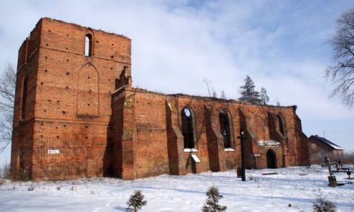 Zdjecie POLSKA / warmińsko-mazurskie / Żuławy Elbląskie / Ruiny kościoła w Fiszewie (XIV-XV w.)