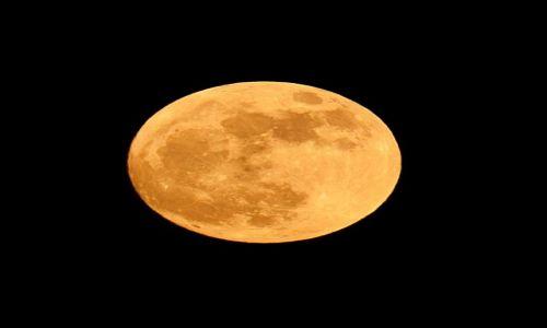 Zdjecie POLSKA / Mazowsze / Zielonka / Perygeum księżyca 5 maja 2012