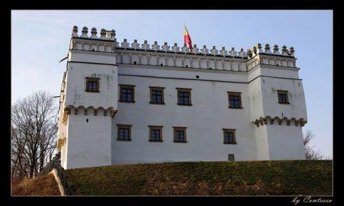 Zdjecie POLSKA / Beskid Niski / Szymbark / Perła polskiego renesansu-Kasztel w Szymbarku