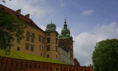 Zdjecie POLSKA / małopolskie / Kraków / Wawel