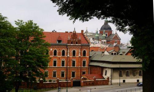Zdjecie POLSKA / małopolskie / Kraków / Kraków.