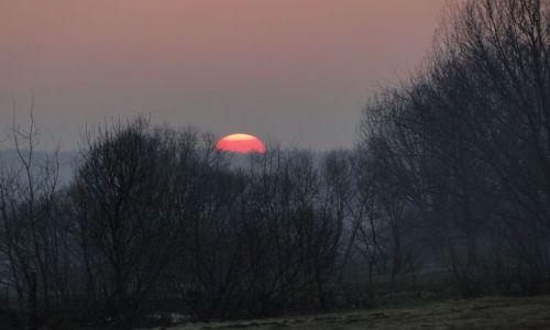 Zdjecie POLSKA / -opolskie / Prudnik / Kolory słońca