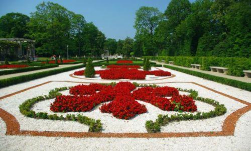 Zdjęcie POLSKA / Mazowsze / Warszawa Wilanów / Pałacowy ogród.