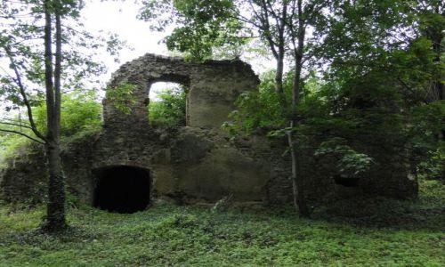 Zdjecie POLSKA / Opolskie / Trzebina / Ruiny zamku -Trzebina