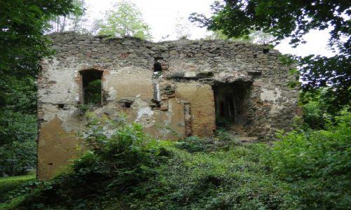 POLSKA / opolskie / Trzebina / Ruiny wpisane w rejestr zabytków