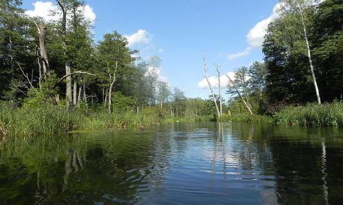 Zdjecie POLSKA / Mazury / Krutynia / Spływ Krutynią