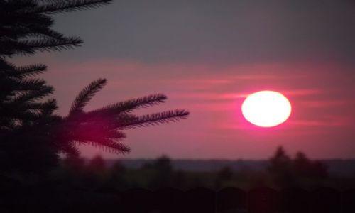 Zdjecie POLSKA / Suwalszczyzna / Suwałki / zachód słońca 2