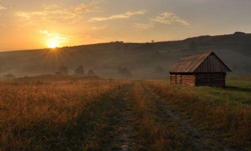 Zdjecie POLSKA / Beskidy / Beskid Żywiecki / na szlaku