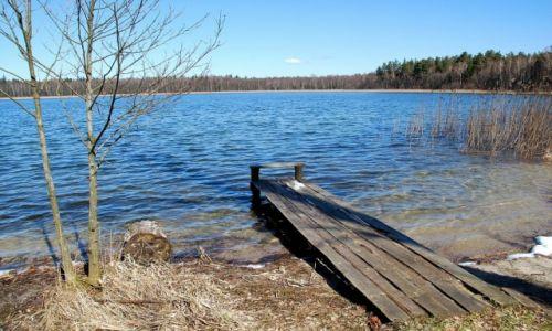 Zdjęcie POLSKA / Augustowszczyzna / Jezioro Brozane / Ukryte jezioro